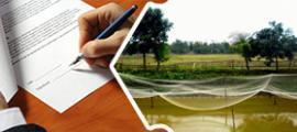 Allotment of Land: Know the Procedures